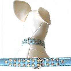 dog collars light blue
